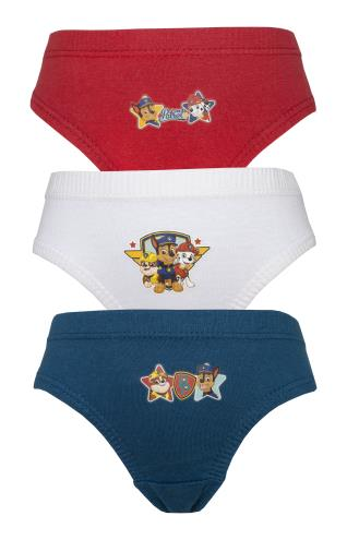 Boys Paw Patrol 3 Pack Pants / Briefs (72339)